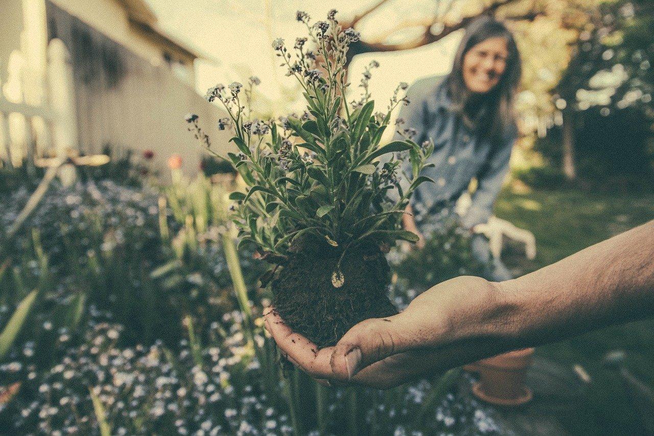 The Gardener Lifestyle