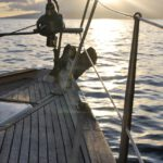 3 Key Things to Consider When Buying Sailing Gloves